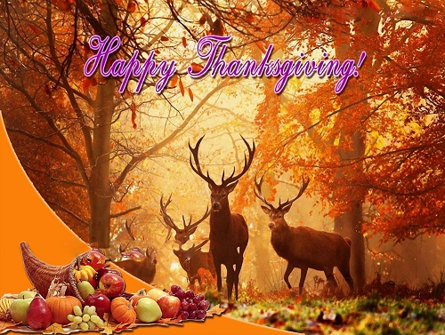 Images For Thanksgiving