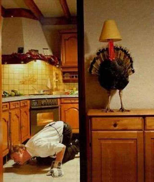 Funny Thanksgiving Pictures 2018