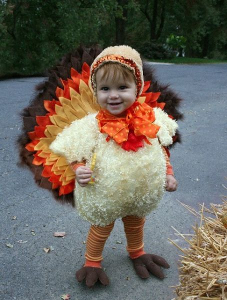 HD funny Thanksgiving pictures