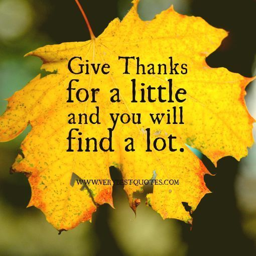 quotes about Thanksgiving